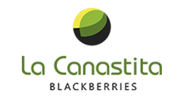 La Canastita Blackberries