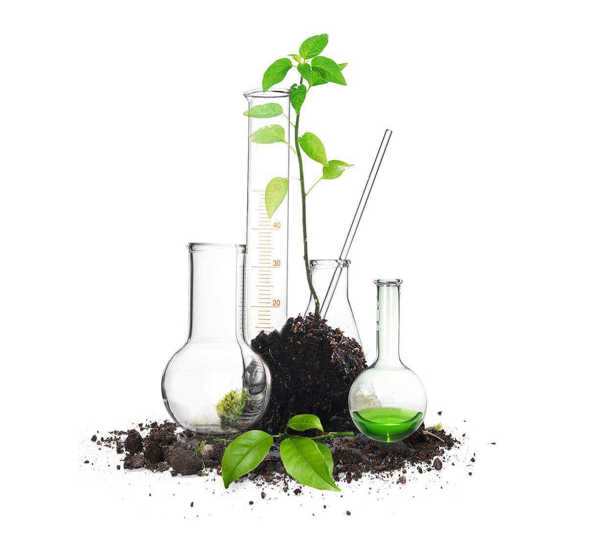 Unimos ciencia y naturaleza para crear nuestras soluciones